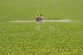 Pesticide_Spraying_sm