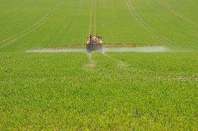 Pesticide_Spraying_sm.jpg
