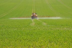 Pesticide_Spraying_sm.jpg