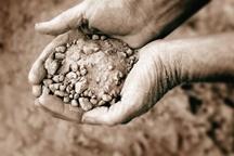 Soil_sm.jpg