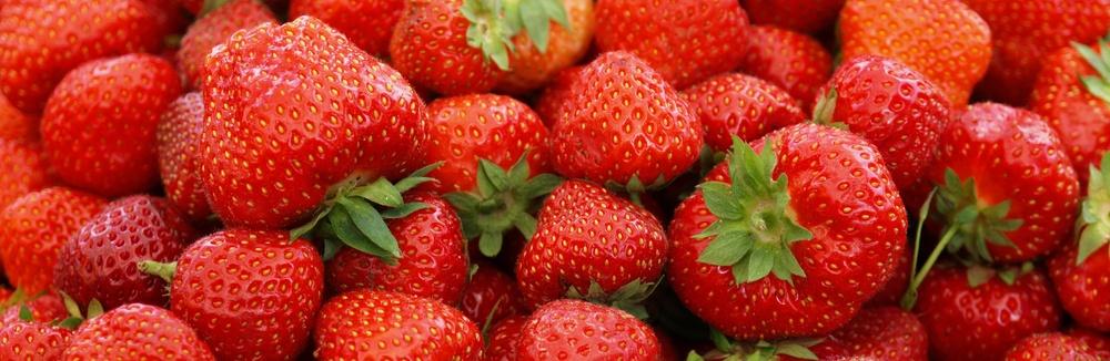 Close-up of fresh summer red strawberries .jpeg